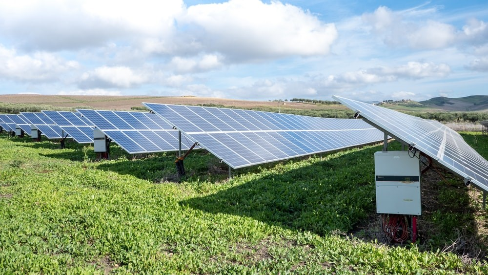 Rows of solar panels in a green field.